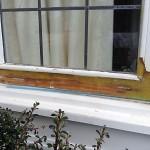 Wood Care Repair - during repair