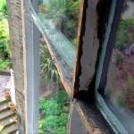 Wood Care Repair 04 - before